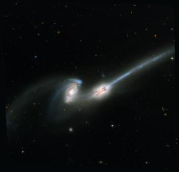 The Mice, as these colliding galaxies are called, are a pair of spiral galaxies seen about 160 million years after their closest encounter. Gravity has drawn stars and gas out of the galaxies into long tails. Credit: NASA, H. Ford (JHU), G. Illingworth (UCSC/LO), M.Clampin (STScI), G. Hartig (STScI), the ACS Science Team, and ESA